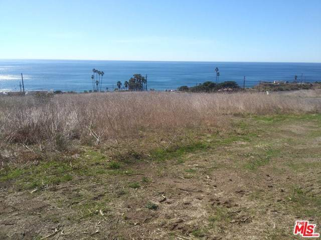 0 Pacific Coast Highway, Malibu, CA 90265 (#21680596) :: Rogers Realty Group/Berkshire Hathaway HomeServices California Properties