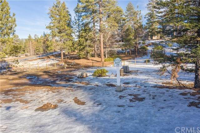 819 Pine Meadow Court, Big Bear, CA 92315 (#PW21012268) :: Realty ONE Group Empire