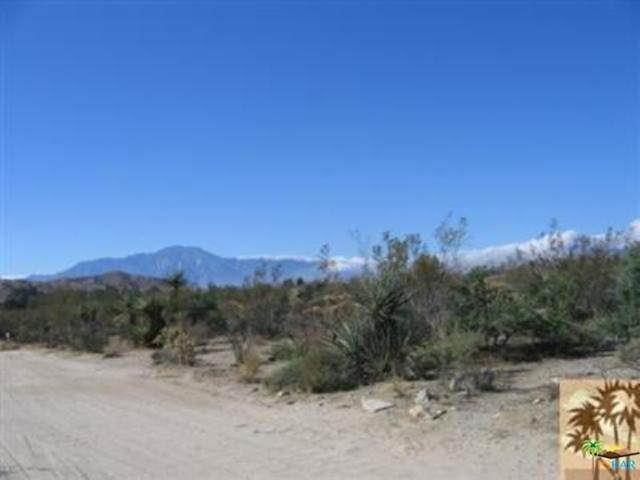 9792 Fobes Road, Morongo Valley, CA 92256 (#21682494) :: The Veléz Team
