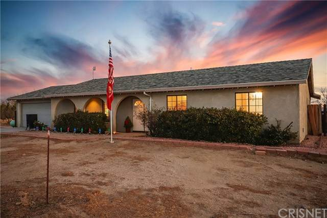 5732 Charan Road, Rosamond, CA 93560 (#SR21012628) :: American Real Estate List & Sell