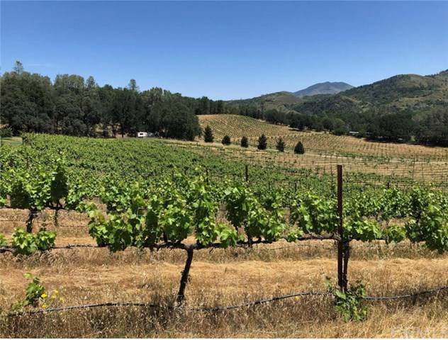 10095 Kelsey Creek Rd, Kelseyville, CA 95451 (#LC21012063) :: Realty ONE Group Empire
