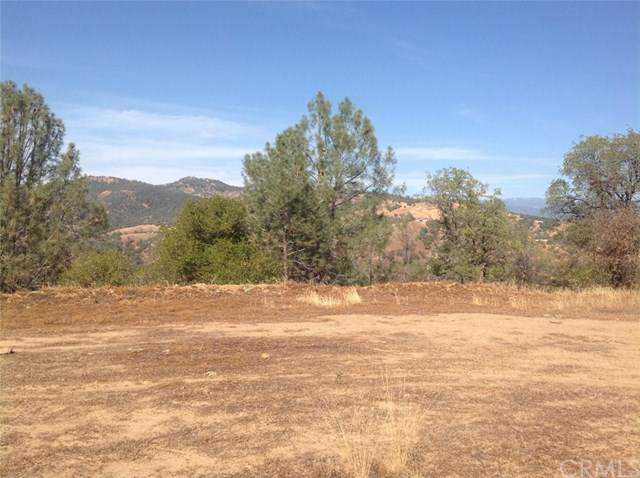 0-44 AC Northstar Lane, Coarsegold, CA 93614 (#FR21009855) :: RE/MAX Masters