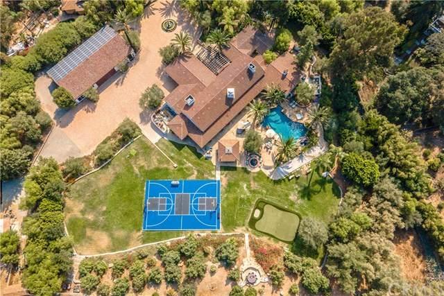 27453 Ortega, San Juan Capistrano, CA 92675 (#NP21013034) :: Legacy 15 Real Estate Brokers