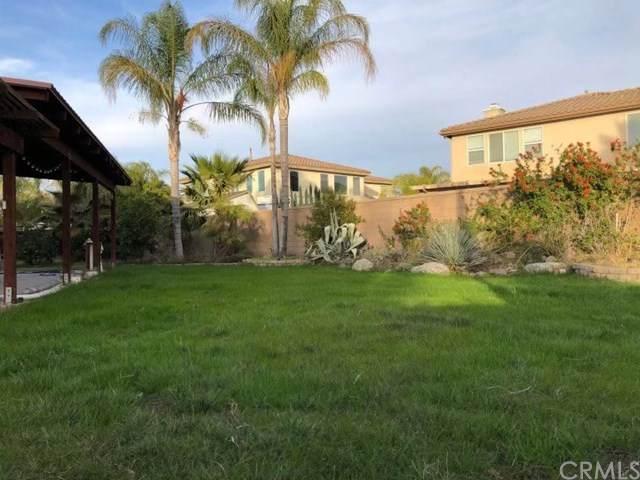695 Wamblee Lane, San Jacinto, CA 92582 (#WS21011190) :: Legacy 15 Real Estate Brokers