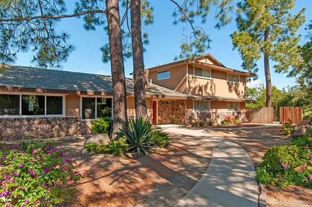 2828 N Victoria Drive, Alpine, CA 91901 (#PTP2100462) :: Power Real Estate Group
