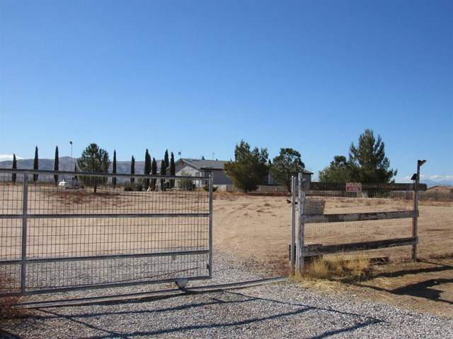 23975 Colony Road, Apple Valley, CA 92308 (#531497) :: Realty ONE Group Empire