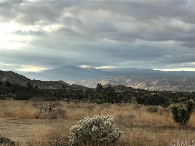 58151 Terbush, Yucca Valley, CA 92284 (#JT21014951) :: Realty ONE Group Empire