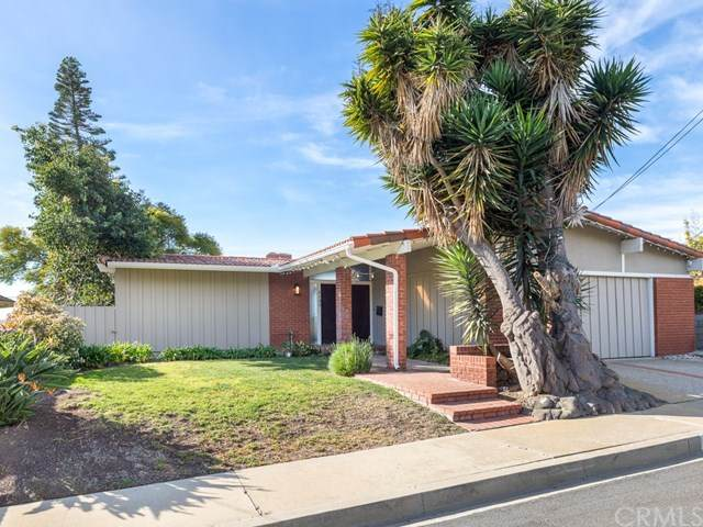 2139 Mcrae Drive, San Pedro, CA 90732 (#SB21003534) :: The Results Group