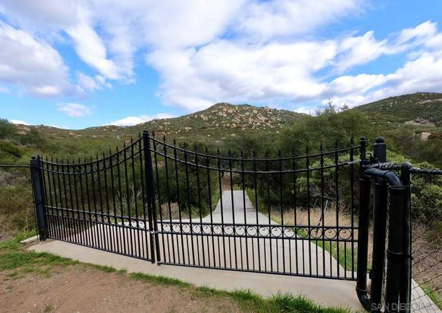 2717 Honey Springs Rd, Jamul, CA 91935 (#210001959) :: Doherty Real Estate Group
