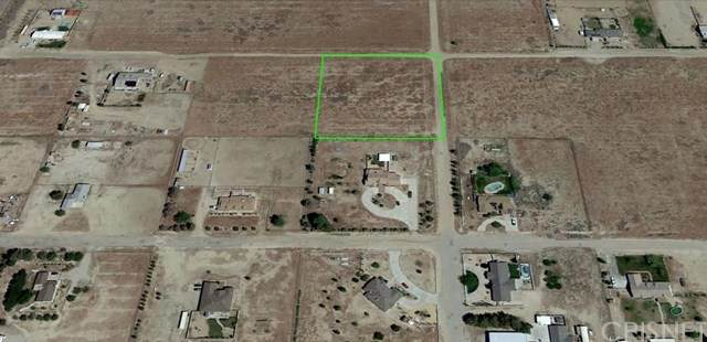 7700 Cypress Avenue, Rosamond, CA 93560 (#SR21015465) :: Realty ONE Group Empire