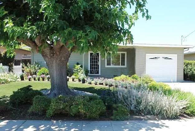 587 Kirk Avenue, Sunnyvale, CA 94085 (#ML81827085) :: RE/MAX Empire Properties