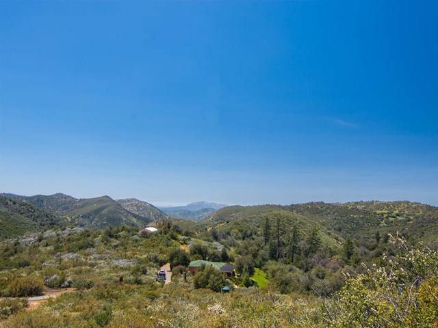 5731 Boulder Creek Road, Julian, CA 92036 (#NDP2100858) :: Millman Team