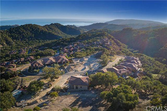 5595 Merlin Court, Avila Beach, CA 93424 (#SP21009949) :: The Brad Korb Real Estate Group