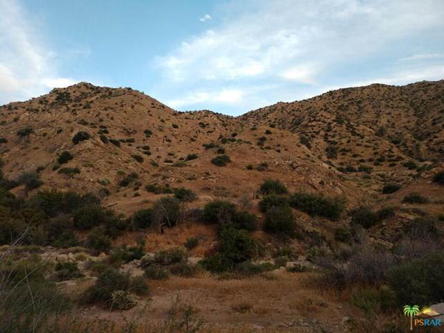 0 Off Water Canyon, Pioneertown, CA 92268 (#21685294) :: Team Forss Realty Group