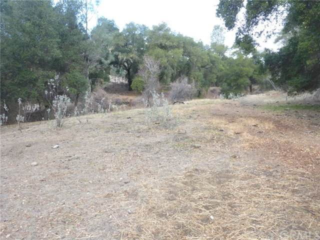0 Vineyard Canyon(Parcel 29)Road,San Miguel,CA 93451(#NS21016763)::团队Forss Realty Group