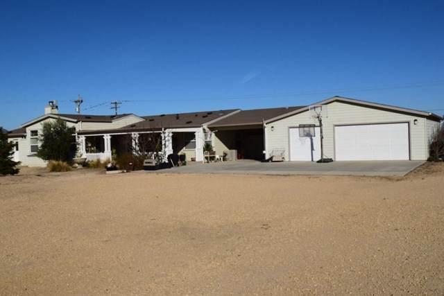 53650 Oasis Road, King City, CA 93930 (#ML81827354) :: Massa & Associates Real Estate Group   Compass