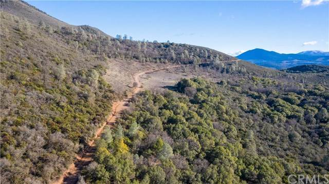 6195 Konocti Road, Kelseyville, CA 95451 (#LC21017852) :: Power Real Estate Group