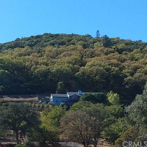7625 Highway 175, Kelseyville, CA 95451 (#LC21016447) :: Frank Kenny Real Estate Team