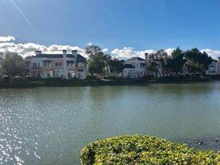 46 Eddystone Court, Redwood City, CA 94065 (#ML81827470) :: The Results Group