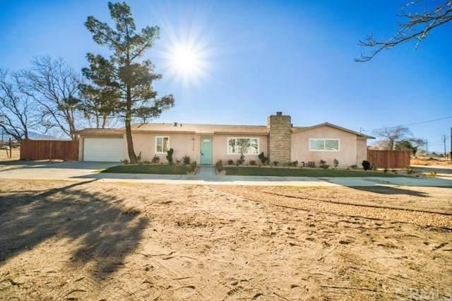 10654 E Avenue R, Littlerock, CA 93543 (#RS21019795) :: Power Real Estate Group