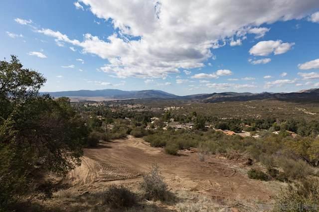 0 Camino Ortega, Warner Springs, CA 92086 (#210002710) :: Koster & Krew Real Estate Group | Keller Williams