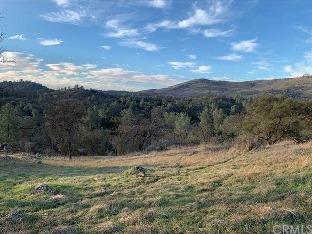 3224 Silver Bush Place, Catheys Valley, CA 95306 (#MP21021997) :: Twiss Realty