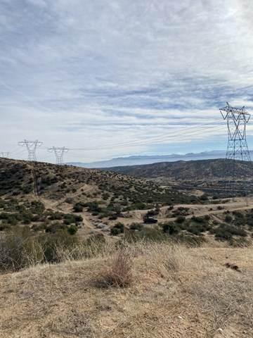 0 Geenies, Oak Hills, CA 92344 (#531894) :: BirdEye Loans, Inc.