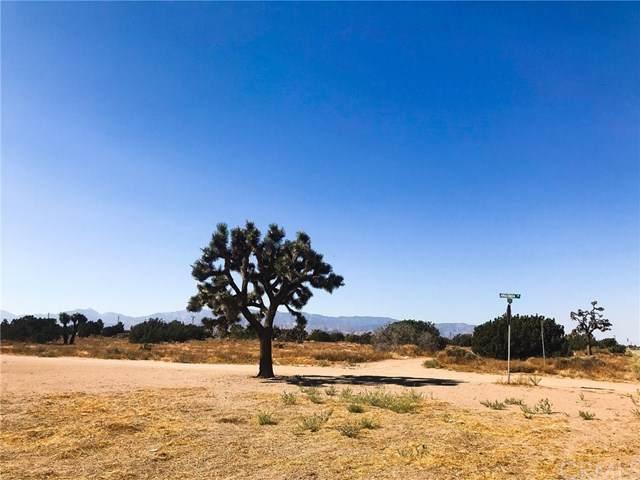 0 White Fox, Oak Hills, CA 92344 (#CV21025532) :: Koster & Krew Real Estate Group   Keller Williams