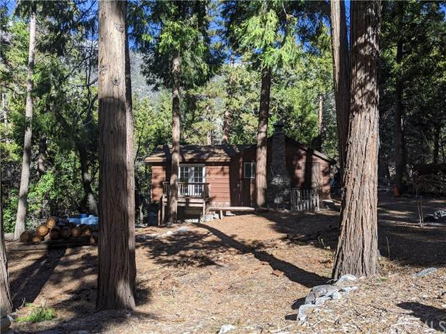 9257 Wood Road, Forest Falls, CA 92339 (#EV21025725) :: Power Real Estate Group