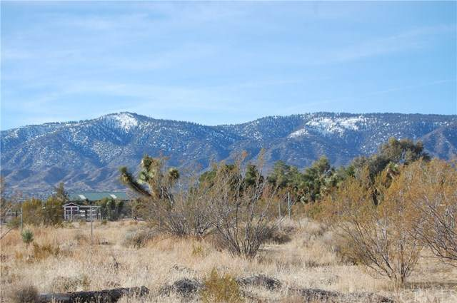 0 Oasis Road, Pinon Hills, CA 92372 (#IG21028013) :: Power Real Estate Group