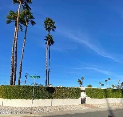 1120 Linda Vista Road, Palm Springs, CA 92262 (#219057126DA) :: Power Real Estate Group