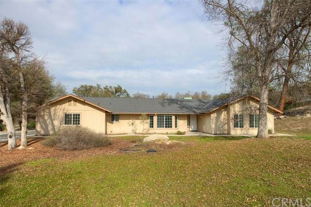 42789 Deep Forest Drive - Photo 1