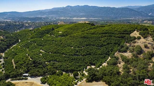 10894 Creek Road, Ojai, CA 93023 (#21693810) :: Rogers Realty Group/Berkshire Hathaway HomeServices California Properties