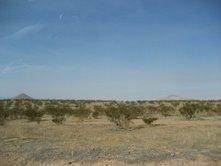 0 El Mirage Road - Photo 1