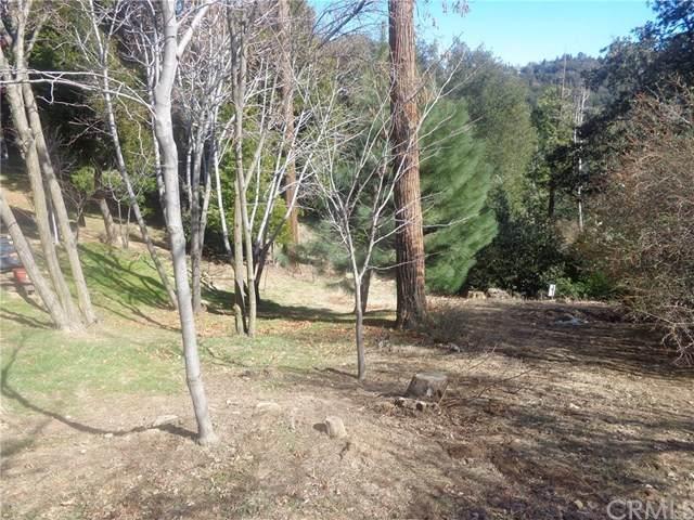 706 Deer Run Road - Photo 1