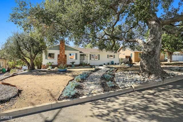 217 Pasqual Avenue, San Gabriel, CA 91775 (#P1-3434) :: Mainstreet Realtors®