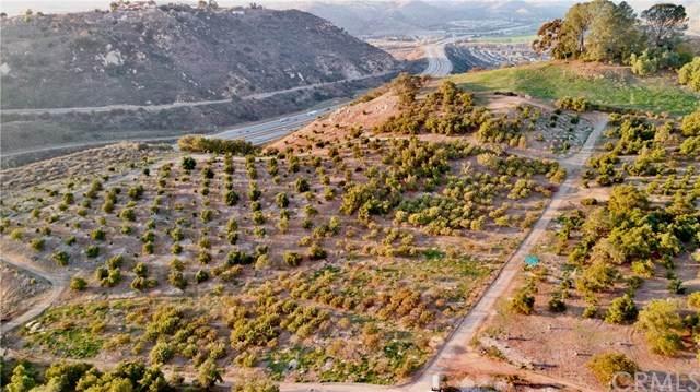 0 W Lilac Road, Escondido, CA 92026 (MLS #OC21025959) :: Desert Area Homes For Sale