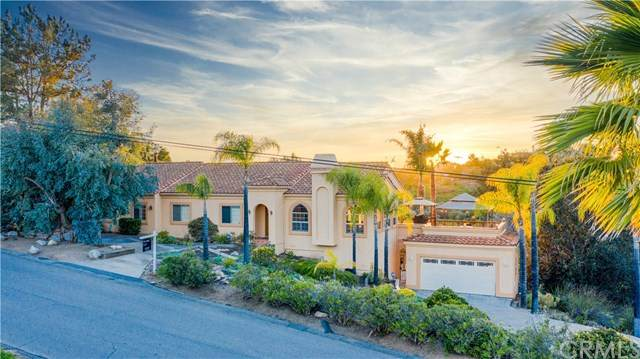 1121 Morro Road, Fallbrook, CA 92028 (#SW21036420) :: Millman Team