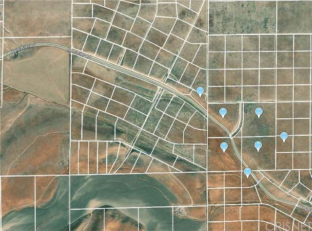 14605 Lancaster Road, Antelope Acres, CA 93536 (#SR21036683) :: Wendy Rich-Soto and Associates