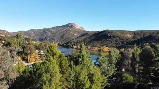 2764 Via Dieguenos, Alpine, CA 91901 (#PTP2101208) :: Veronica Encinas Team