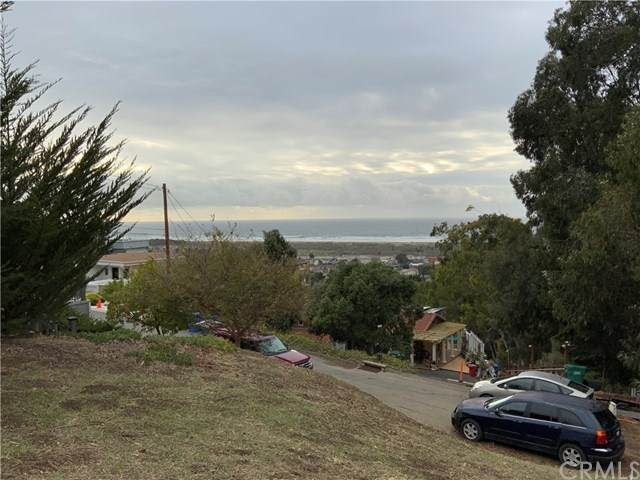 2690 Laurel Avenue, Morro Bay, CA 93442 (#SC21024402) :: Team Forss Realty Group
