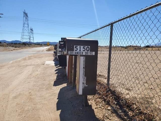 5150 Coriander Drive, Oak Hills, CA 92344 (#532448) :: BirdEye Loans, Inc.