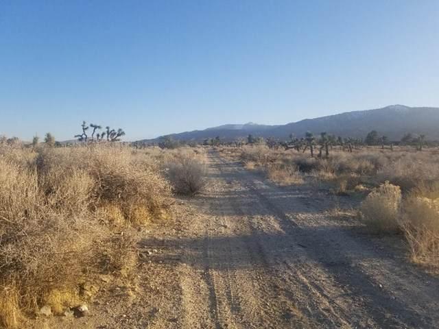 0 Wild Pony Path Road - Photo 1