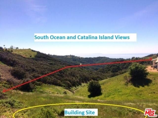 1050 Latigo / Castro Peak Road - Photo 1
