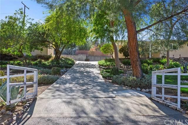 16650 Marshall Avenue, Lake Elsinore, CA 92530 (#SW21039385) :: RE/MAX Empire Properties