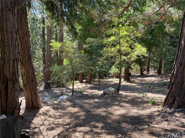 0 Grass Valley Rd, Lake Arrowhead, CA 92352 (#EV21039480) :: Millman Team
