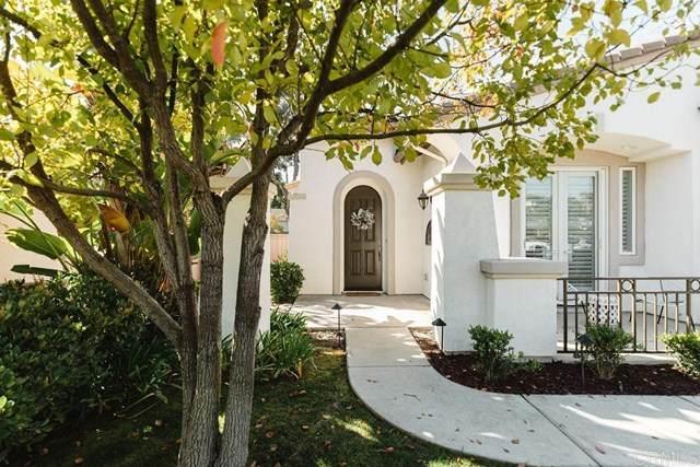 1026 Alexandra Lane, Encinitas, CA 92024 (#NDP2102054) :: Jett Real Estate Group