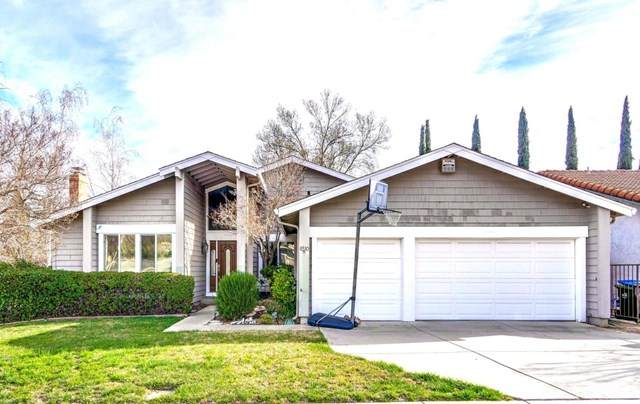6510 Plainview Court, San Jose, CA 95120 (#ML81831464) :: Koster & Krew Real Estate Group | Keller Williams