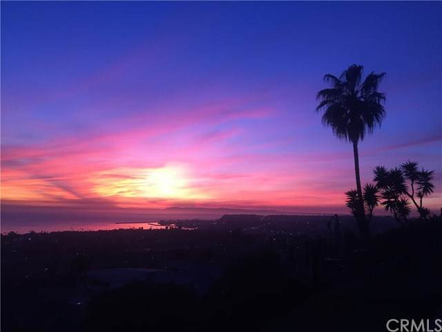 3921 Calle Real, San Clemente, CA 92673 (#LG21039426) :: Rogers Realty Group/Berkshire Hathaway HomeServices California Properties