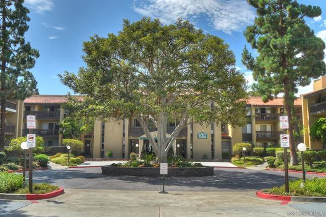 4600 Lamont 4-102, San Diego, CA 92109 (#210005045) :: Jett Real Estate Group